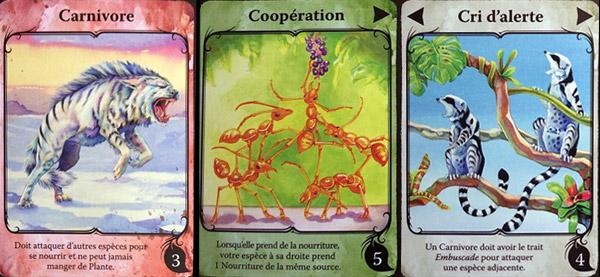 Evolution détail des traits