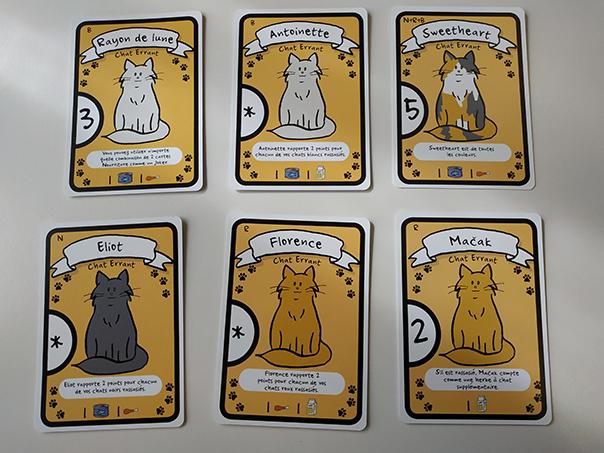 cat-lady-cartes-chat