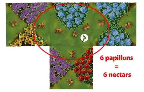 6-papillons-=-6-nectars