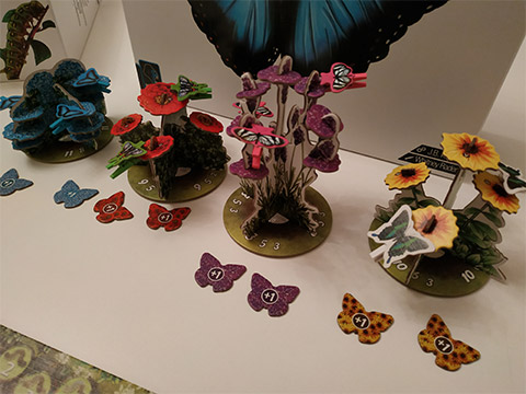 papillon-fleur-pots