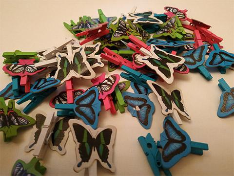 papillon-pince