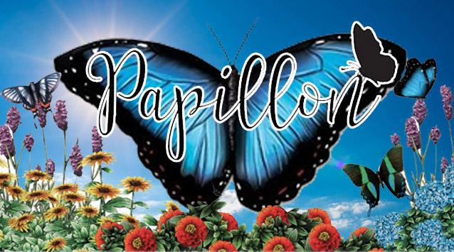 papillon-pres-finale
