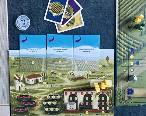 viticulture-photo-21-partie