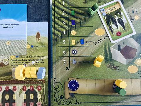 viticulture-photo-22-zoom-plateau