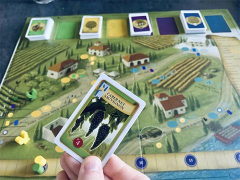 viticulture-photo-23-partie