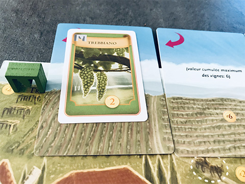 viticulture-photo-8-zoom-cartes