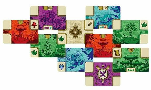 codex-naturalis-cartes-pres
